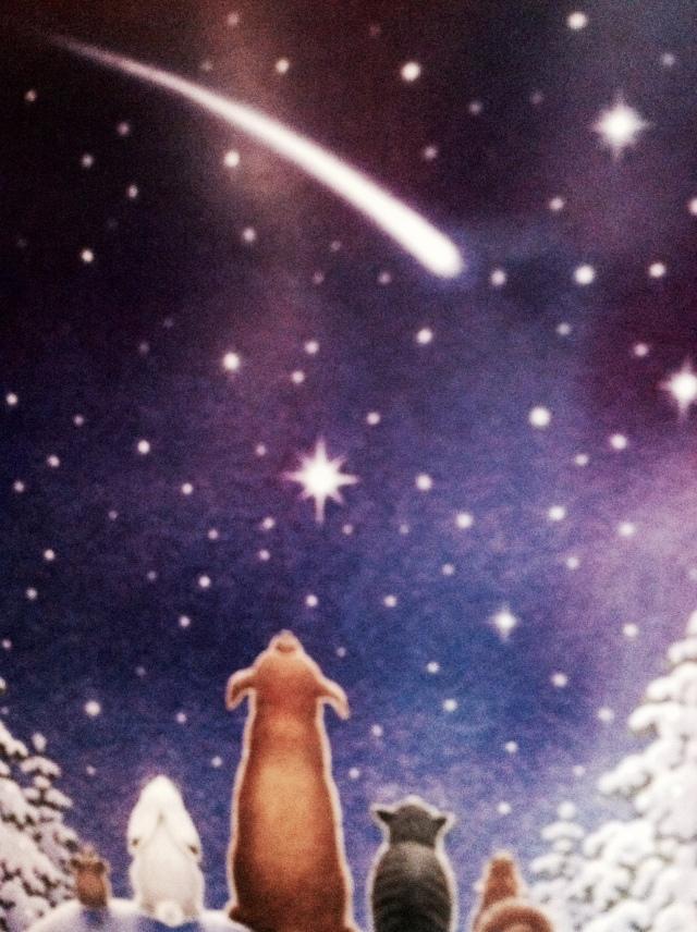Christmas asteroid.jpg